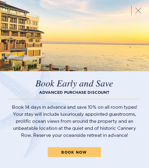 Book 14 days in advance and save 10%